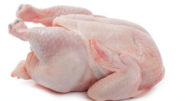 دجاج طري