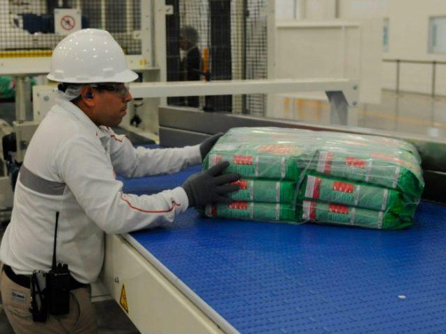 Aumento histórico del empleo en Michoacán