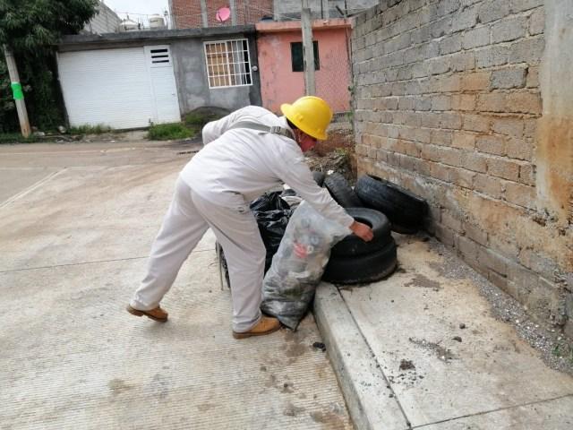 Michoacán, sin casos de zika y chikungunya