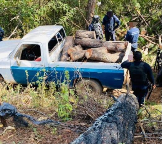 Asegura SSP dos vehículos cargados con más de 1.5 metros cúbicos de madera ilegal