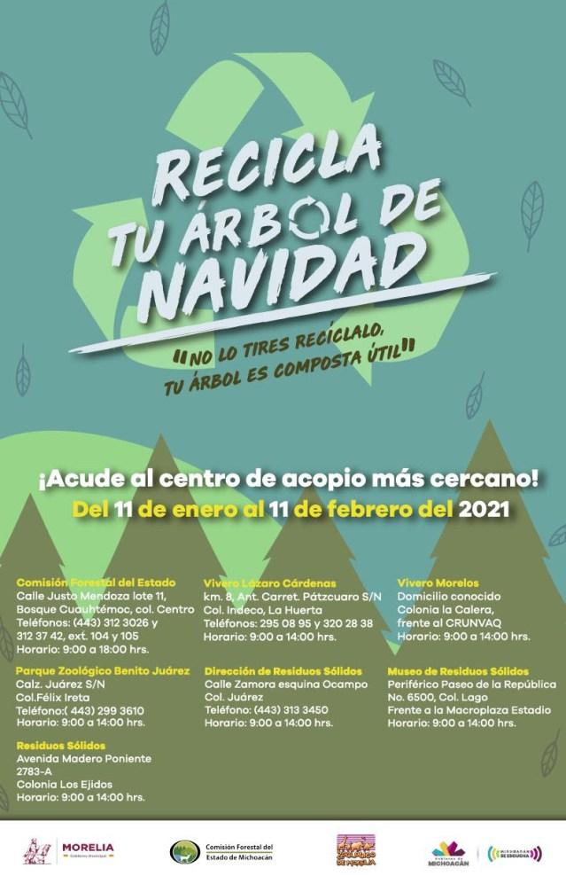 Lanza Cofom campaña para reciclar árboles navideños
