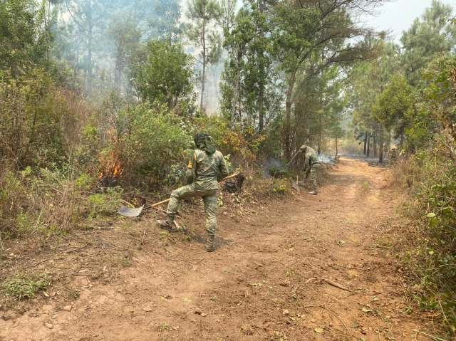 Ejército ayuda a enfrentar incendios forestales en Michoacán