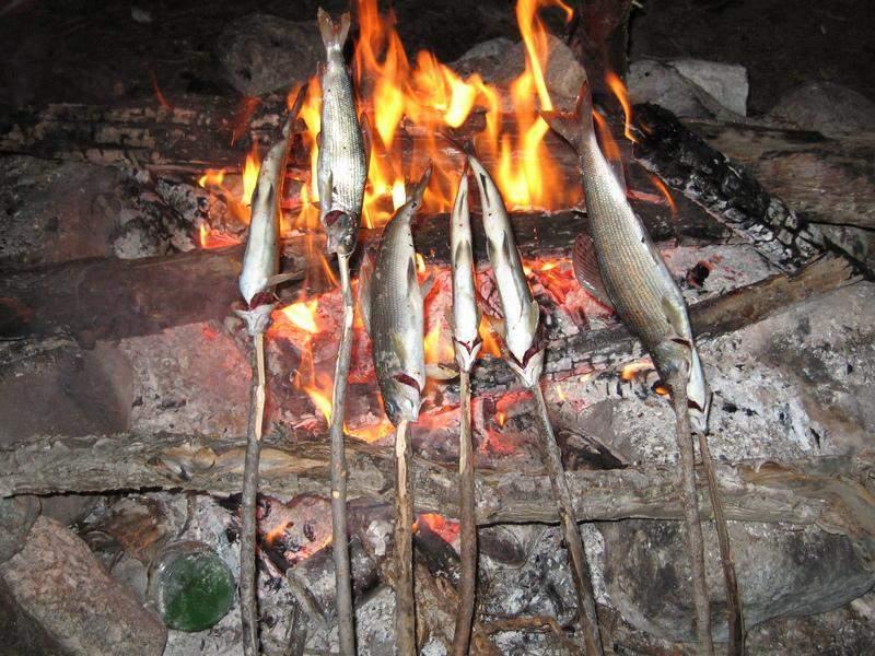Дунайский деликатес или рыба жареная на костре