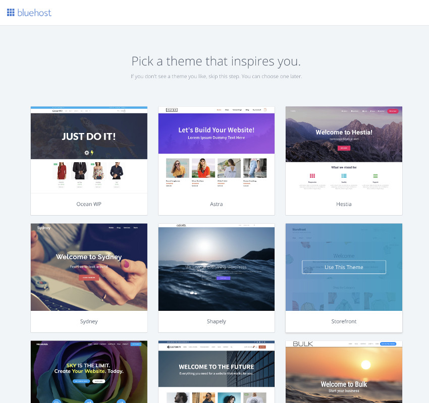 choose the perfect WordPress theme for your Bluehost account