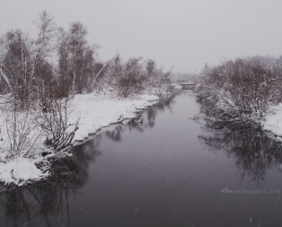 wintry_reflections