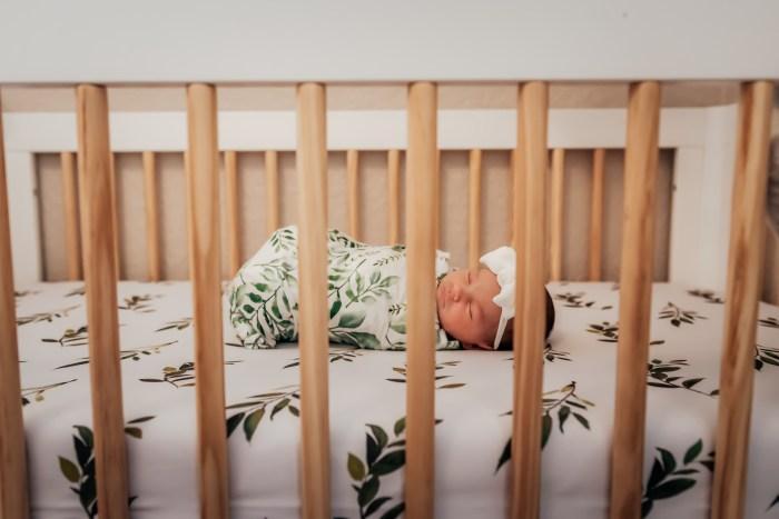 newborn photos tampa