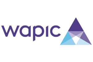 WAPIC Lights Camera Africa