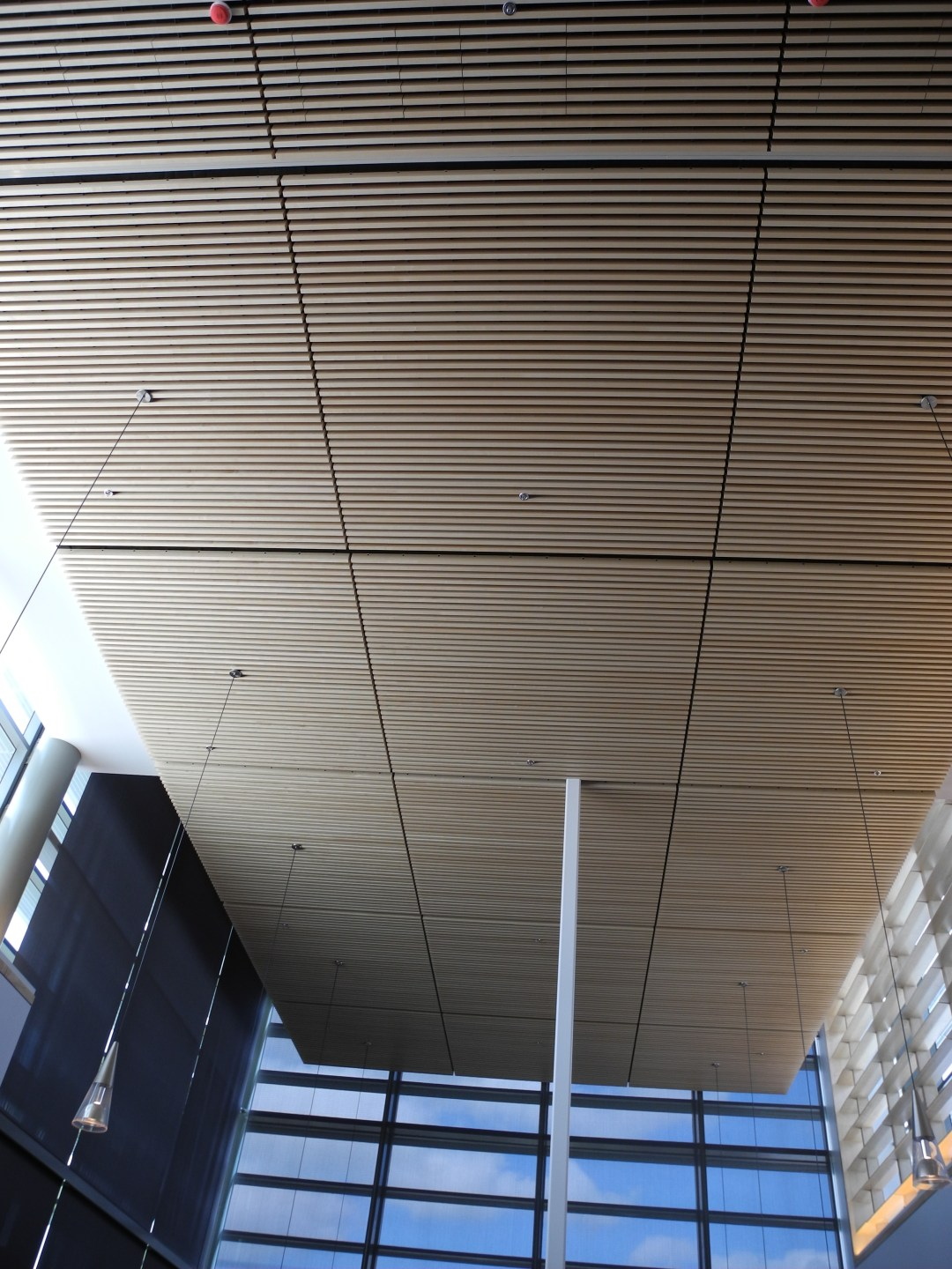 Wooden Acoustical Ceiling from Max PlancK