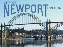 Newport City Council vacancy