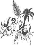 耶穌在世最後七日之行程