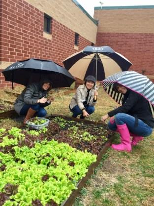seldens-parent-in-the-rain-volunteers