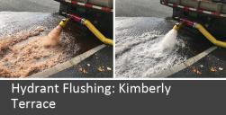 Flushing 3
