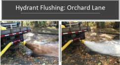 flushing 11