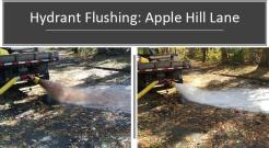 flushing 13