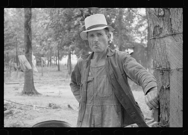 Sharecropper, Wilson cotton plantation, Arkansas