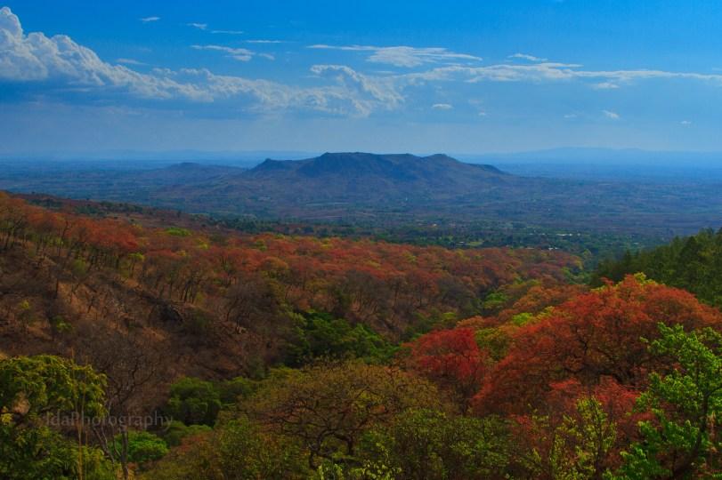 Autumn in Africa
