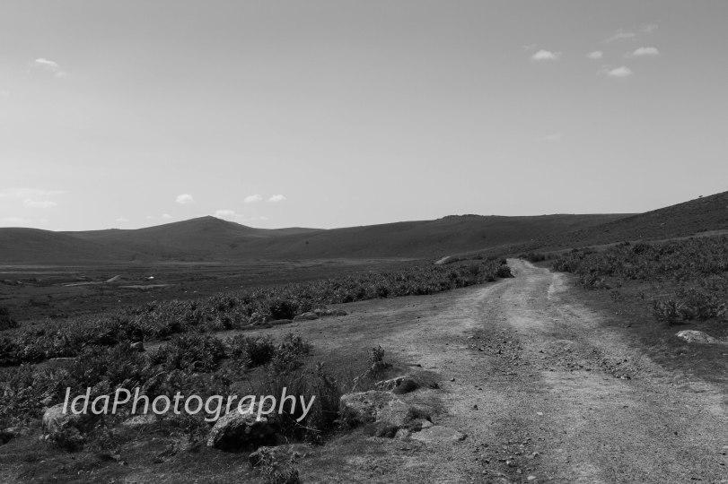 Dartmoor-2223