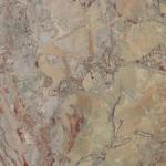 Murrelet marble