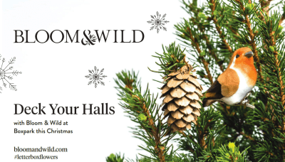 Bloom & Wild - Tiny Christmas Trees, perfect for small spaces 24