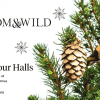 Bloom & Wild - Tiny Christmas Trees, perfect for small spaces 18