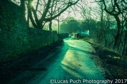 lucaspuch_marchevening_web-2