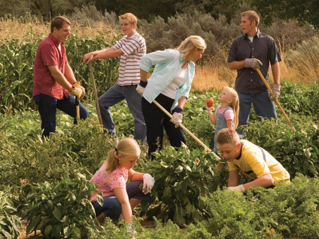 Image result for gardening with family