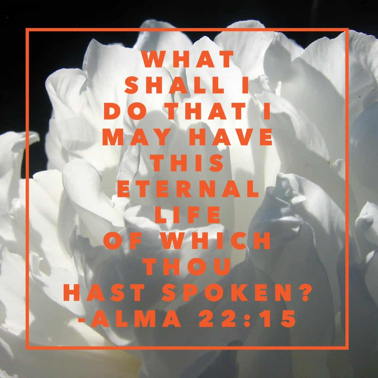 ...What shall I do that I may have this eternal life of which thou hast spoken? Yea, what shall I do that I may be born of God, having this wicked spirit rooted out of my breast, and receive his Spirit, that I may be filled with joy, that I may not be cast off at the last day? Behold, said he, I will give up all that I possess, yea, I will forsake my kingdom, that I may receive this great joy. Alma 22:15