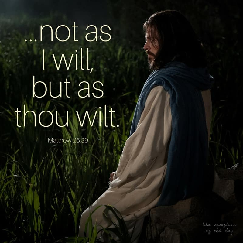 ...not as I will, but as thou wilt. Matthew 26:39