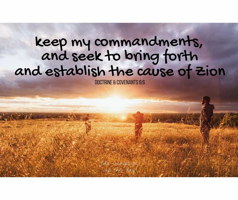 keep my commandments, and seek to bring forth and establish the cause of Zion; Doctrine & Covenants 6:6