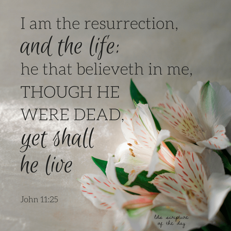 Jesus said unto her, I am the resurrection, and the life: he that believeth in me, though he were dead, yet shall he live: John 11:25