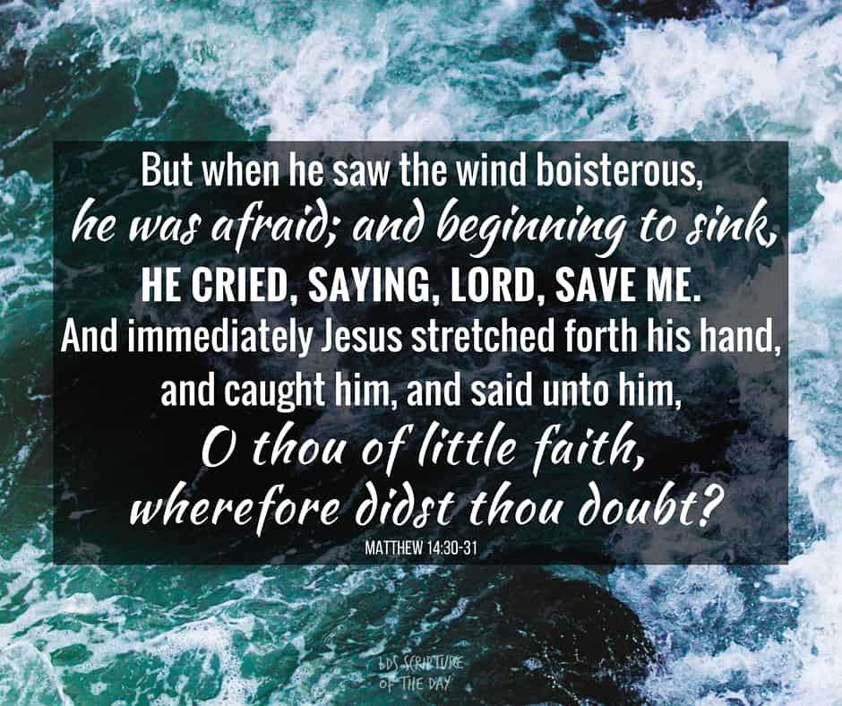 But when he saw the wind boisterous, he was afraid; and beginning to sink, he cried, saying, Lord, save me. And immediately Jesus stretched forth his hand, and caught him, and said unto him, O thou of little faith, wherefore didst thou doubt? Matthew 14:30-31