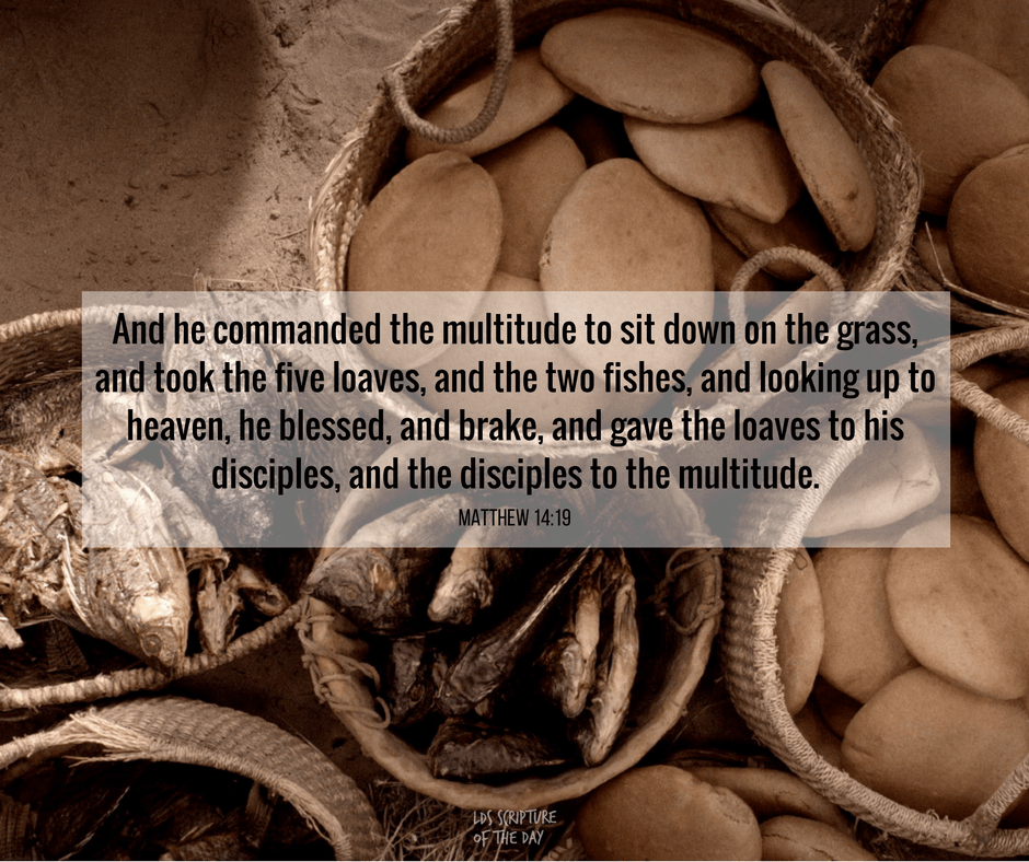 And he commanded the multitude to sit down on the grass, and took the five loaves, and the two fishes, and looking up to heaven, he blessed, and brake, and gave the loaves to his disciples, and the disciples to the multitude. Matthew 14:19