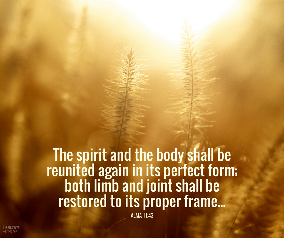 The spirit and the body shall be reunited again in its perfect form; both limb and joint shall be restored to its proper frame... Alma 11:43