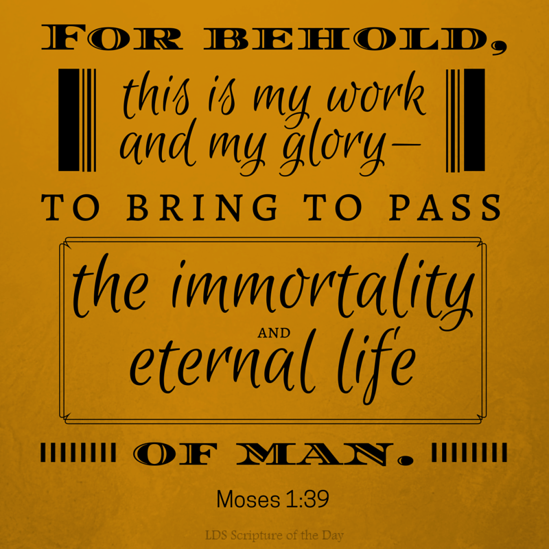 For behold, this is my work and my glory—to bring to pass the immortality and eternal life of man. Moses 1:39