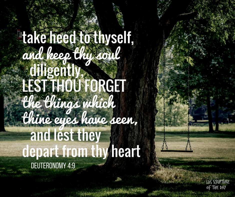 take heed to thyself, and keep thy soul diligently, lest thou forget the things which thine eyes have seen, and lest they depart from thy heart all the days of thy life - Deuteronomy 4:9