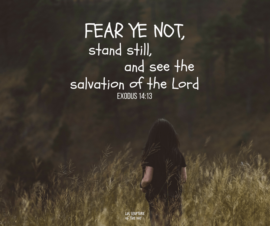 Fear ye not, stand still, and see the salvation of the Lord - Exodus 14:13