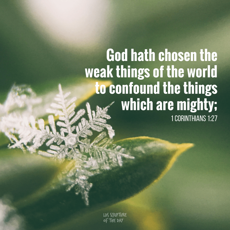 God hath chosen the weak things of the world to confound the things which are mighty; 1 Corinthians 1:27