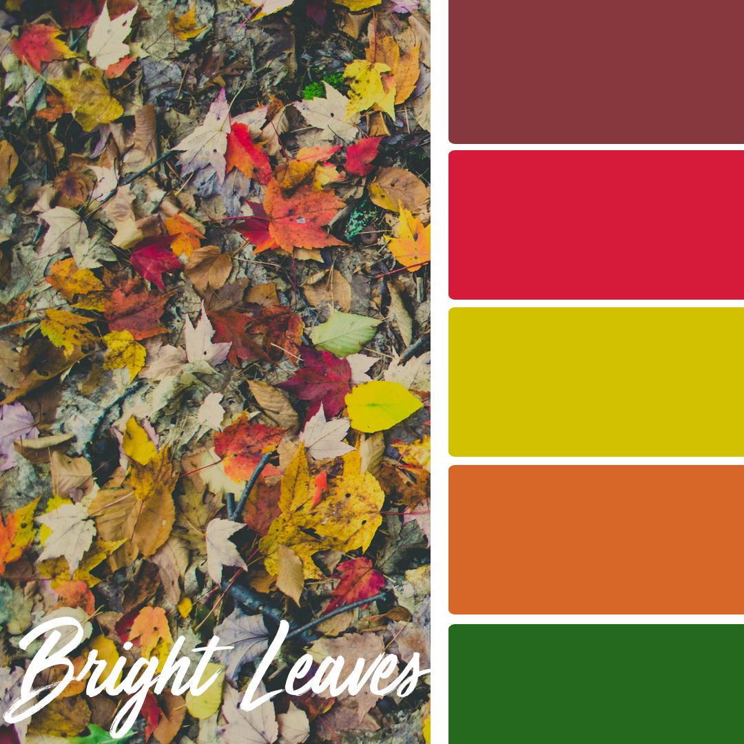 Bright Leaves - 25 Fall Wedding Colors Any Bride & Groom Will Love