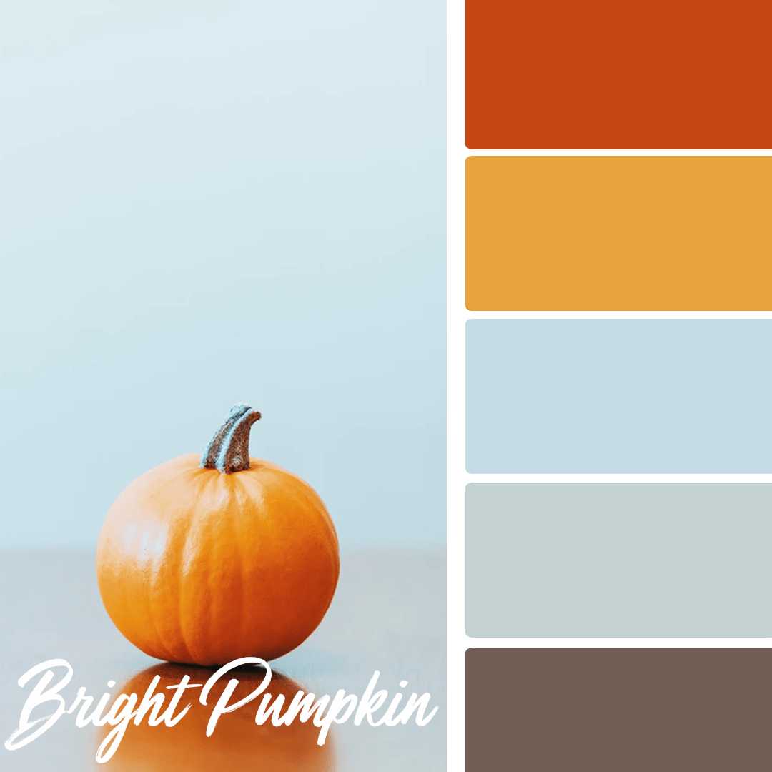 Bright Pumpkin - 25 Fall Wedding Colors Any Bride & Groom Will Love