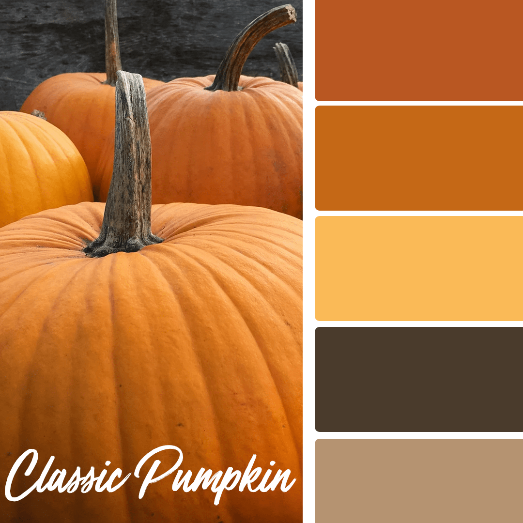 Classic Pumpkin - 25 Fall Wedding Colors Any Bride & Groom Will Love
