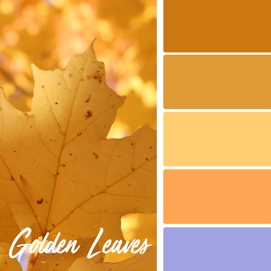 Golden Leaves - 25 Fall Wedding Colors Any Bride & Groom Will Love