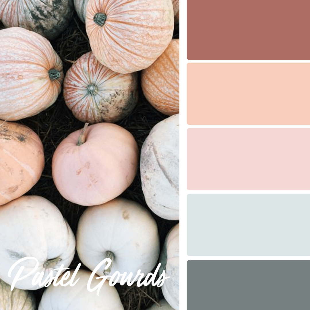 Pastel Gourds - 25 Fall Wedding Colors Any Bride & Groom Will Love