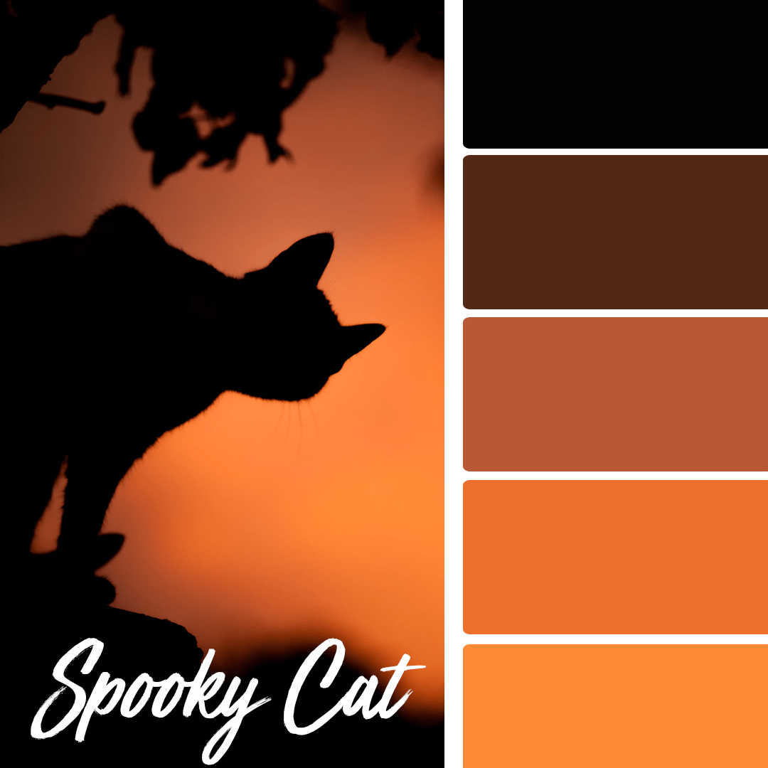 Spooky Cat - 25 Fall Wedding Colors Any Bride & Groom Will Love