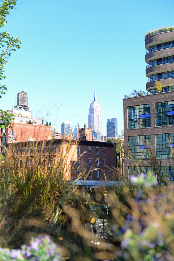 The High Line Walk