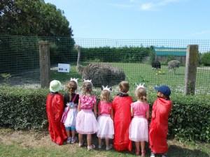 Goûter d'anniversaire à la ferme le Camélus