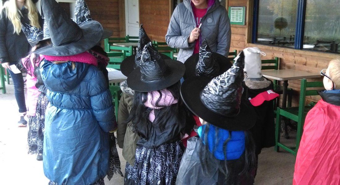 Halloween à la ferme du Camélus