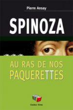 ansay-spinoza