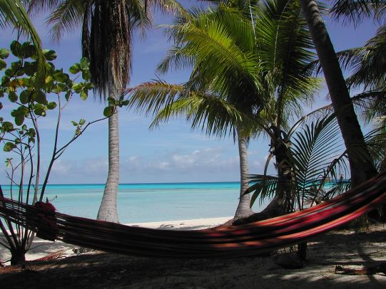Le Miracle Economique Polynésien (MEP)