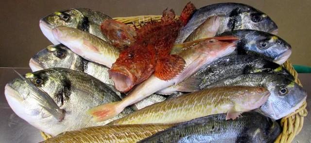 chez michel restaurant de poissons et