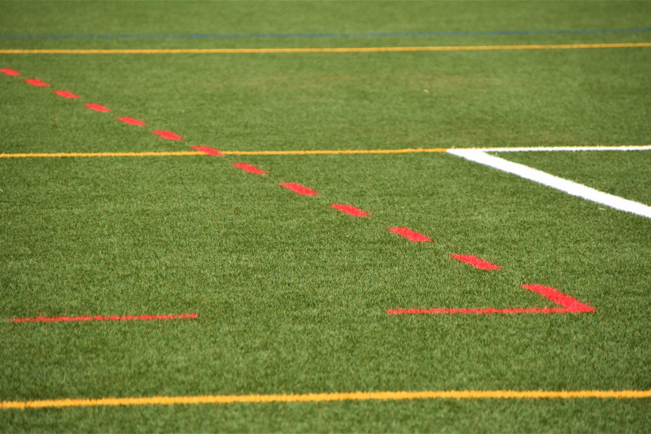 Le sport à emlyon business school